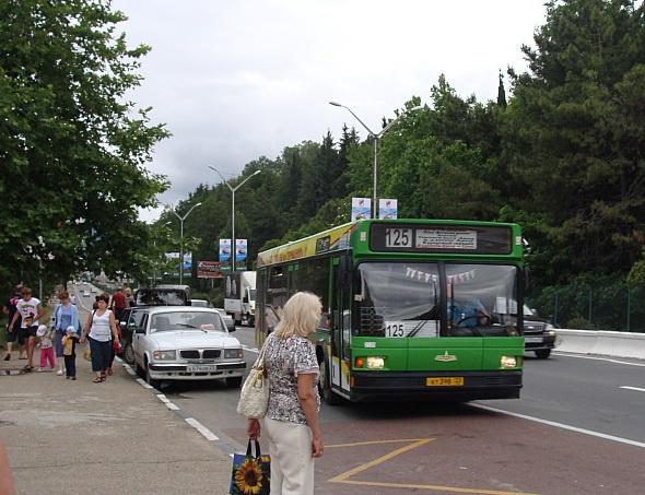По Сочи - на колесах, или как работает транспорт в городе