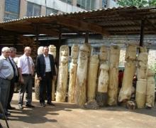 Парки и скверы Голосеевского района украсят деревянными скульптурами
