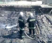 В столичном парке Дружбы народов произошел пожар