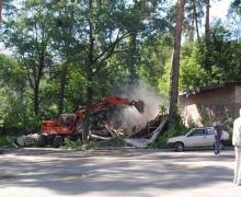 В Пуще-Водице незаконно рубят лес и выгоняют художников