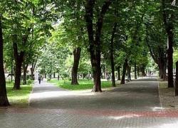 В Святошинском районе будет новый сквер