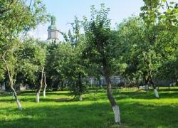 Ученые создали археологическую карту Митрополичьего сада