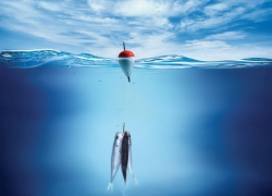 Рыбалка для новичков - это уха и шашлык