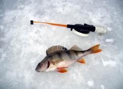 Советы любителям подледного лова