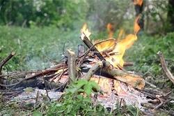 Спасатели просят киевлян разжигать костры только там, где дозволено