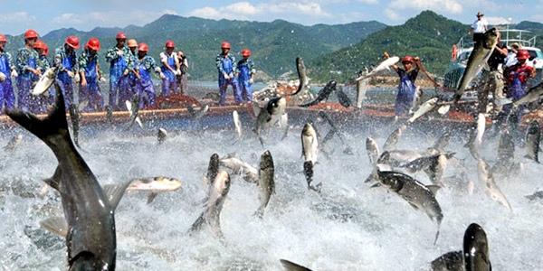 На Трухановом острове состоится спортивная рыбалка