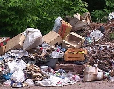 Эксперт назвал источники загрязнения Киева
