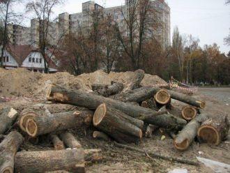 От Беличанского леса остаются щепки и пеньки