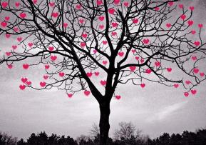 В Киеве установят сердечное дерево