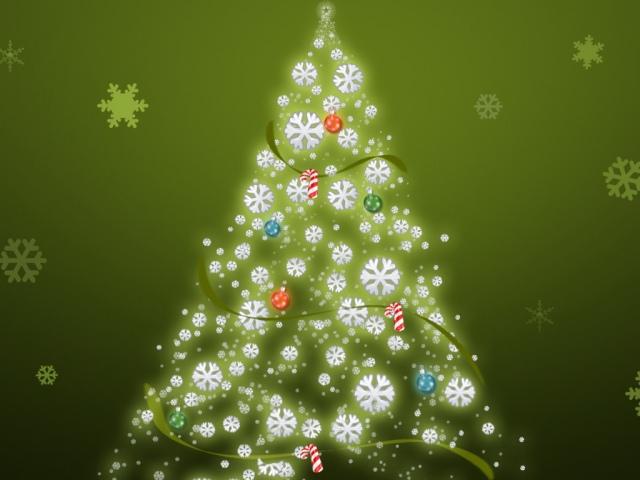 Елки и сосны на Новый год будут стоить до 300 гривен