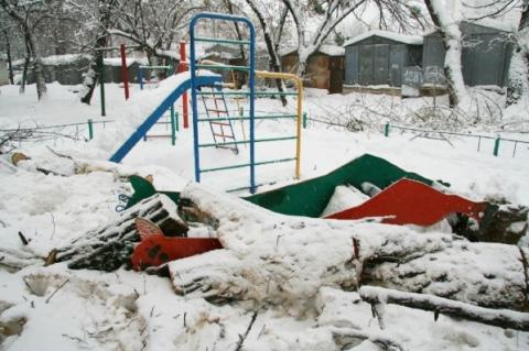 На детскую площадку упало дерево