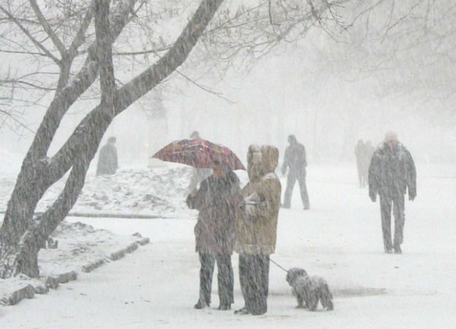 Киевская власть проиграла снежную войну