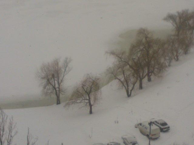 "Озеро Тельбин тоже с ""желтухой""?"