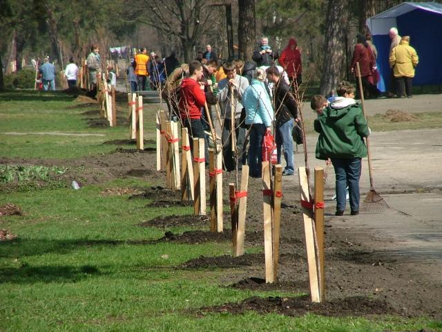Студенты высадят новые деревья в парке Киото