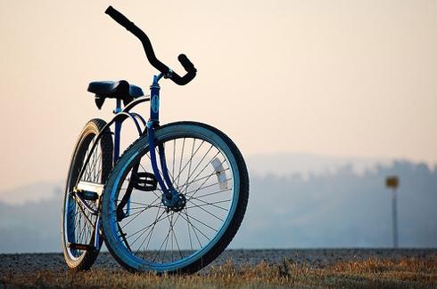 В парке Шевченко можно взять напрокат китайский велосипед