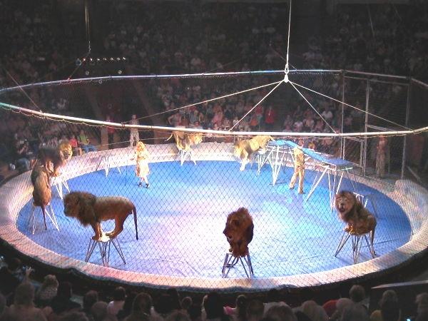 В киевском цирке стартует новый сезон