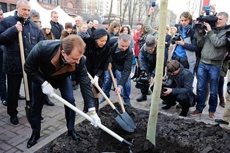 Попов обвинил районного зеленстроя в подмене каштанов на Крещатике