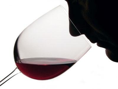 Чем пахнет вино? Пособие для гурманов
