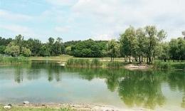 """На озере """"Синее"""" нашли тело погибшей женщины"""