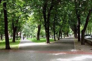 Павловский сквер: реконструкция – начало новой жизни