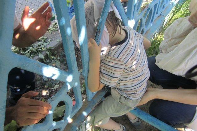 Спасатели освободили голову женщины, застрявшей в заборе