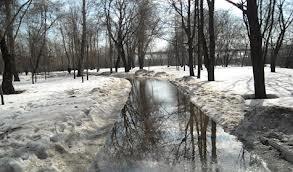 """Жуляны"" спасут от талого снега"