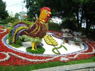 На Певческом поле открывается выставка цветов
