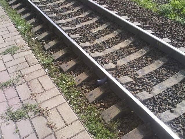 Скоростной поезд насмерть сбил мужчину