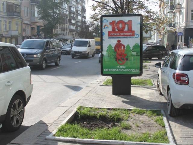 В центре Киева ради рекламы уничтожают деревья