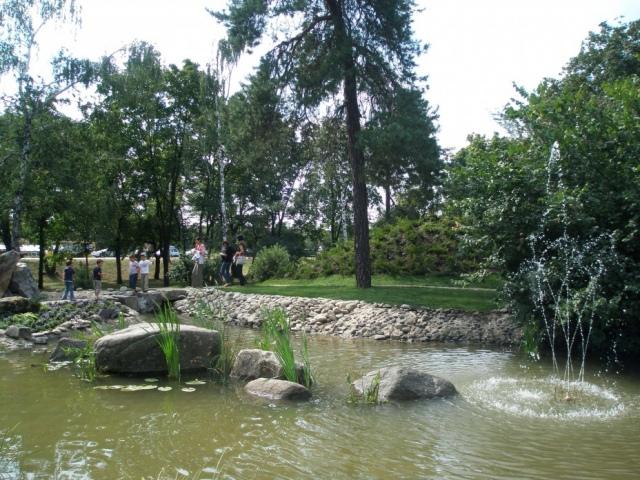 В парке Киото отравили деревья