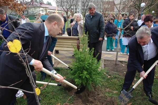 В Киеве высадили 70 елочек