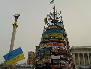 В госбюджет вернут деньги за елку на Майдане Незалежности