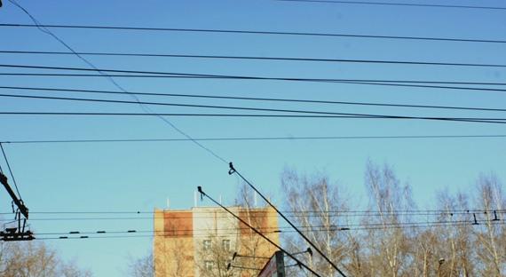 Обрыв проводов: на Московском проспекте остановились троллейбусы
