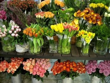 Покупка и доставка цветов: что необходимо для открытия точки продажи?