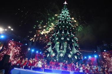 Праздничной елки на Майдане Незалежности больше не будет