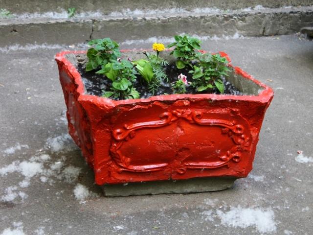 В Киеве появились патриотические клумбы-цветники