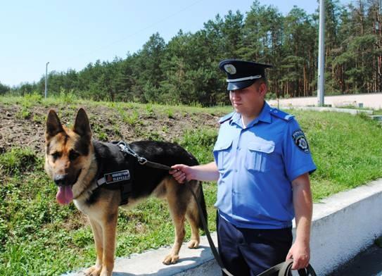 Под Киевом собака помогла задержать убийцу
