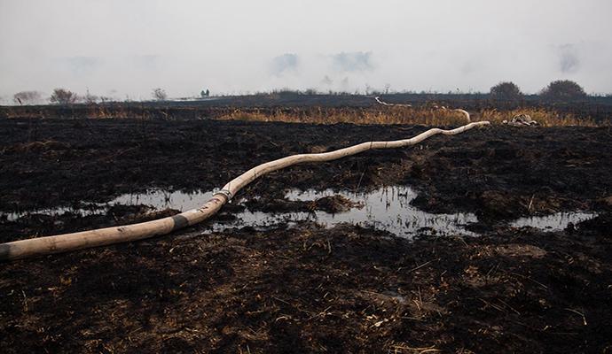 Торфяники под Киевом горят из-за умышленного поджога