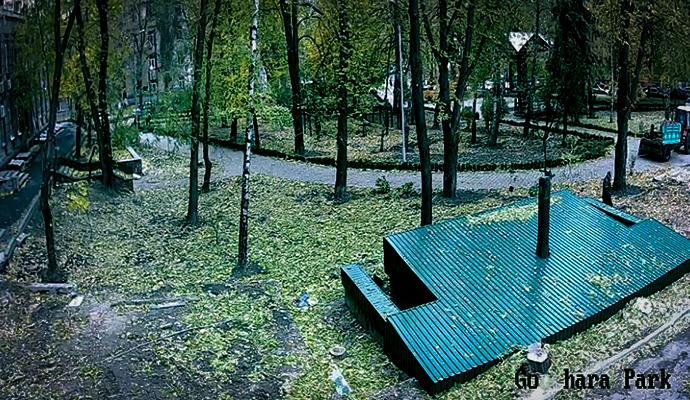 Киевляне смогут гулять по паркам на едином сайте
