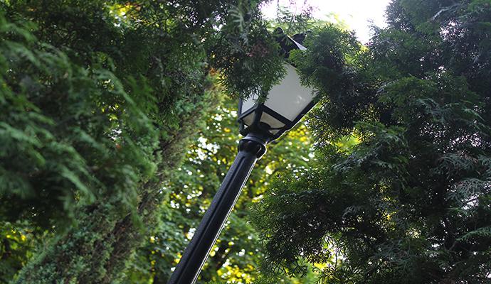 На Дарницком путепроводе обновят уличное освещение