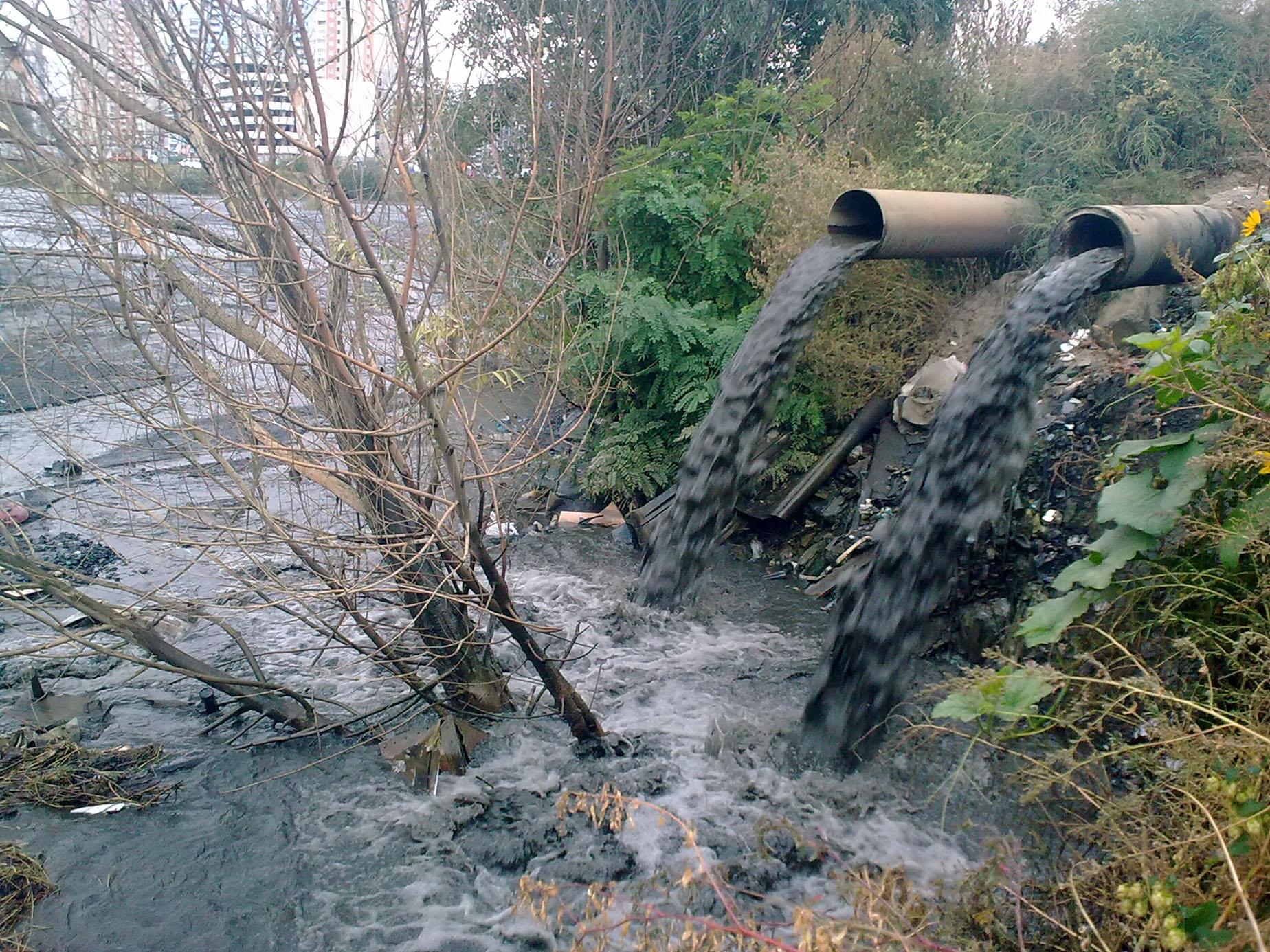 В Дарницком районе Киева экологическая катастрофа
