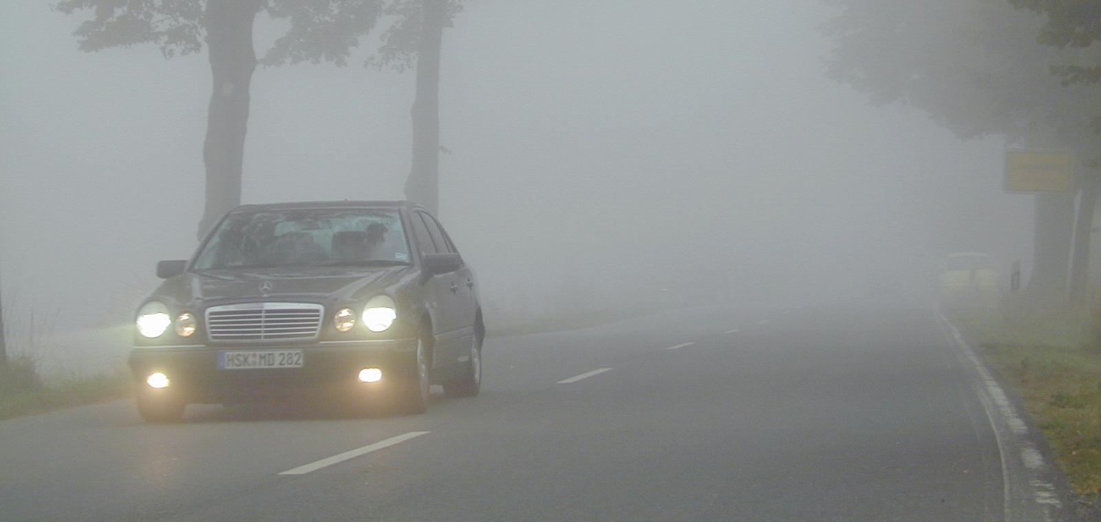 """""""Ежик в тумане"""": водителей предупреждают об ухудшении видимости"""