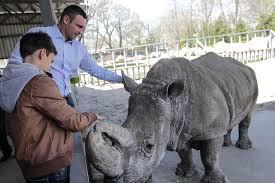 Гидропарк и зоопарк станут европейскими зонами отдыха