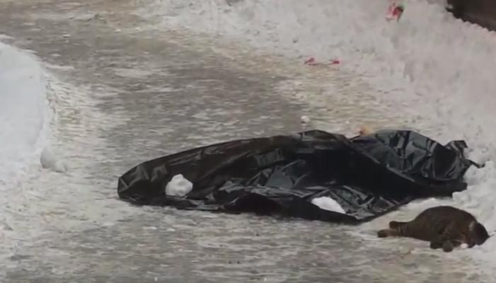 Появилось видео трагедии в Дарницком районе. Женщина с ребенком выпали из окна