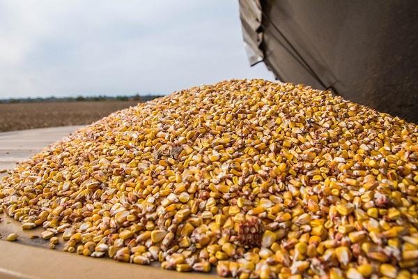 Индексы цен на зерновые - как его считают?