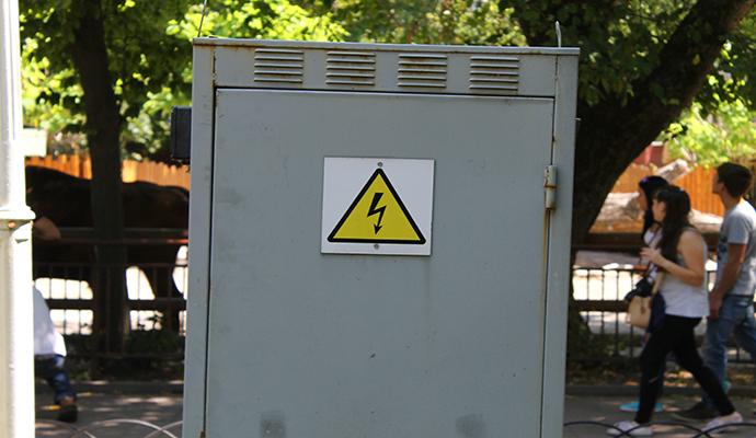 В центре Киева собаку убило током