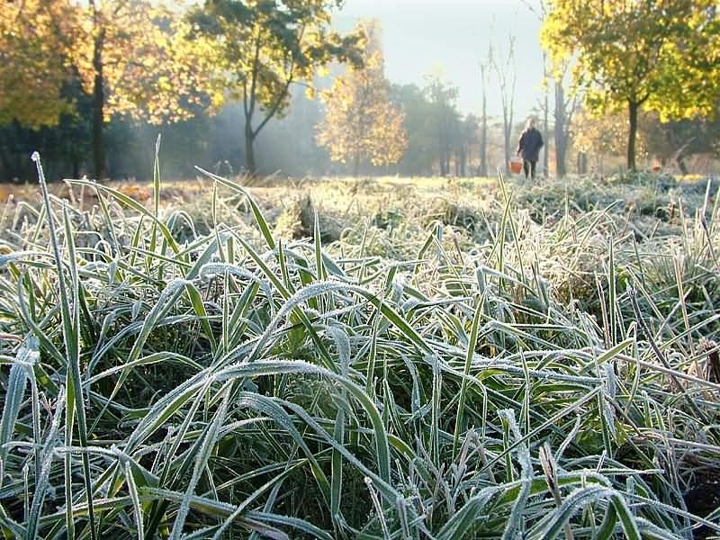 Рано выключили отопление: в Киеве ожидаются заморозки