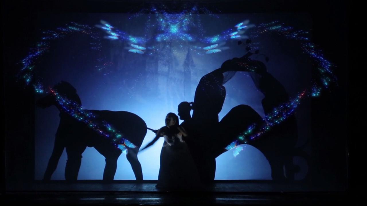 Театр теней Delight создал уникальное 3Д шоу теней