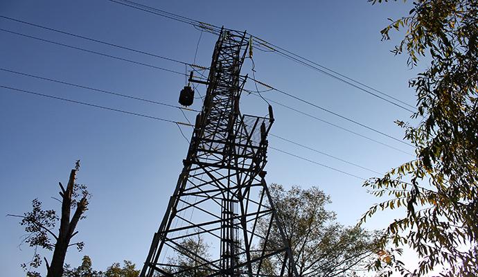 В Киевской области рыбака убило электротоком