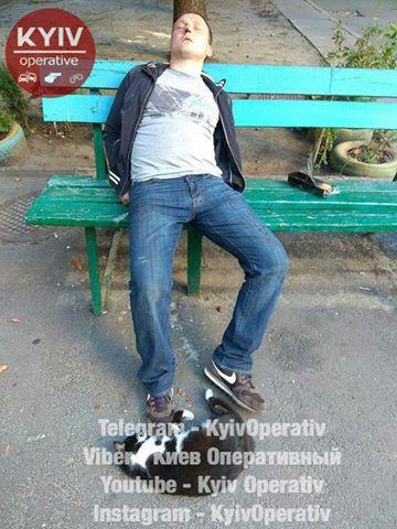 В Киеве на мужчину напал кот. Чтобы спастись, пришлось залезть в квартиру